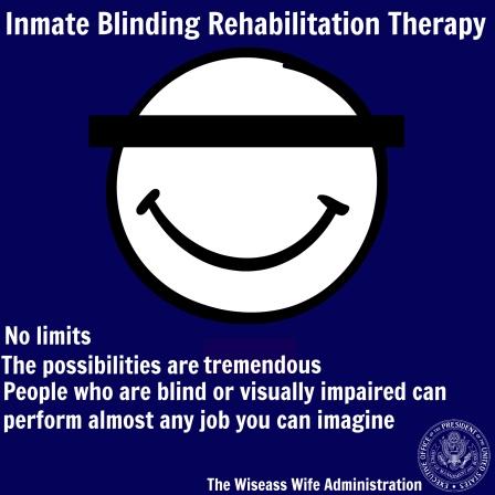 inmateblindrehab